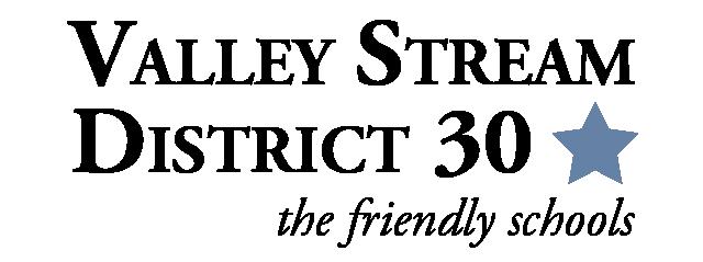 VS30Logo